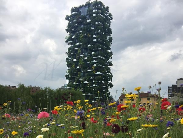 the Vertical Garden, top attraction